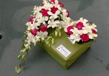 Jetée en orchidées + Bouquet suite